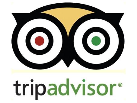 BVC on TripAdvisor